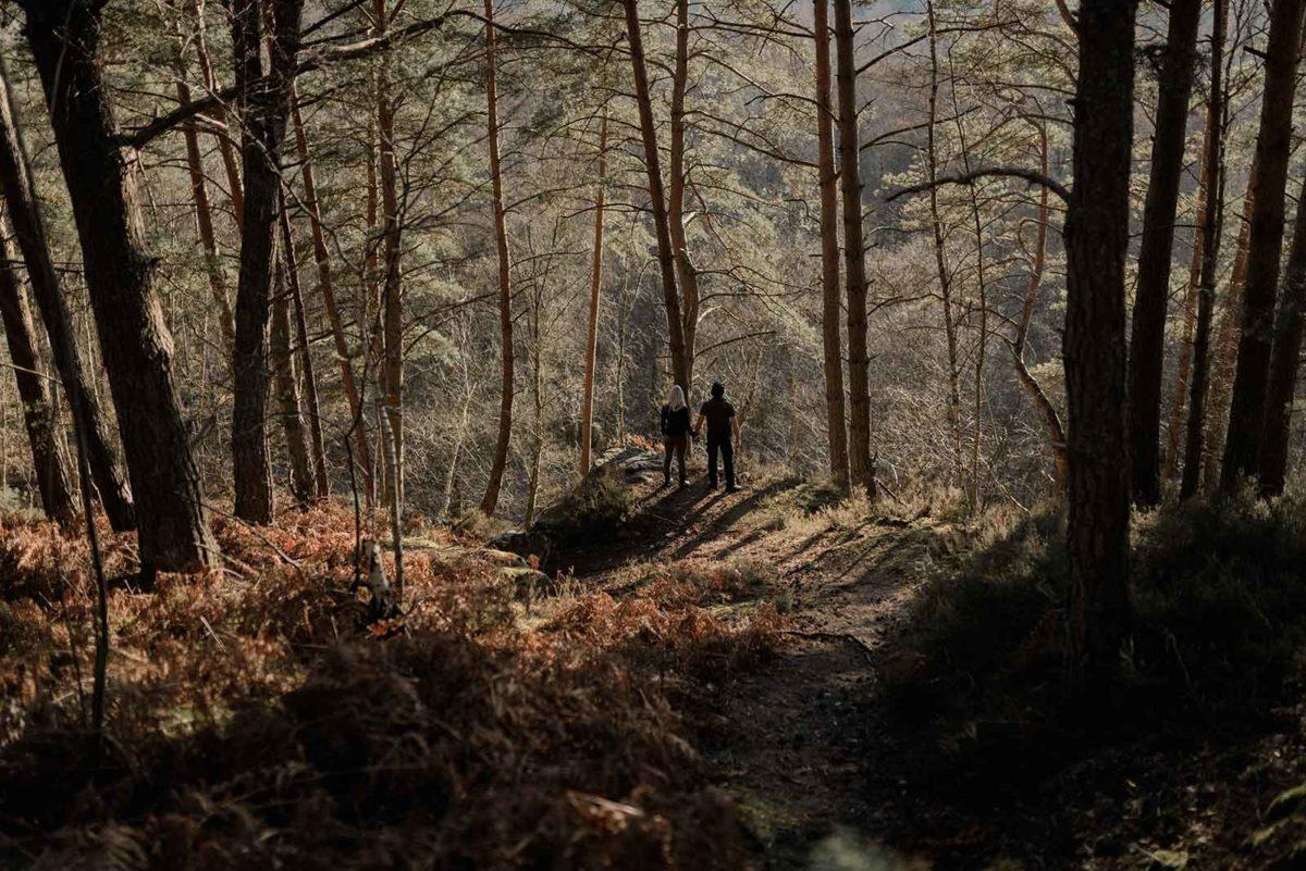 Couple qui domine la forêt et regarde au loin.